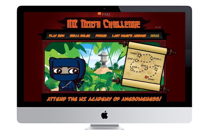 PMI Flash Game Website Portfolio